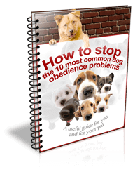 Get Your Free How to Stop Book Now