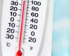 heat-stroke-in-dogs-hot-1