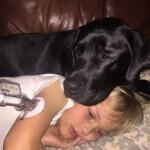 life-saving-dog